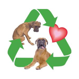 RecycledDoggies