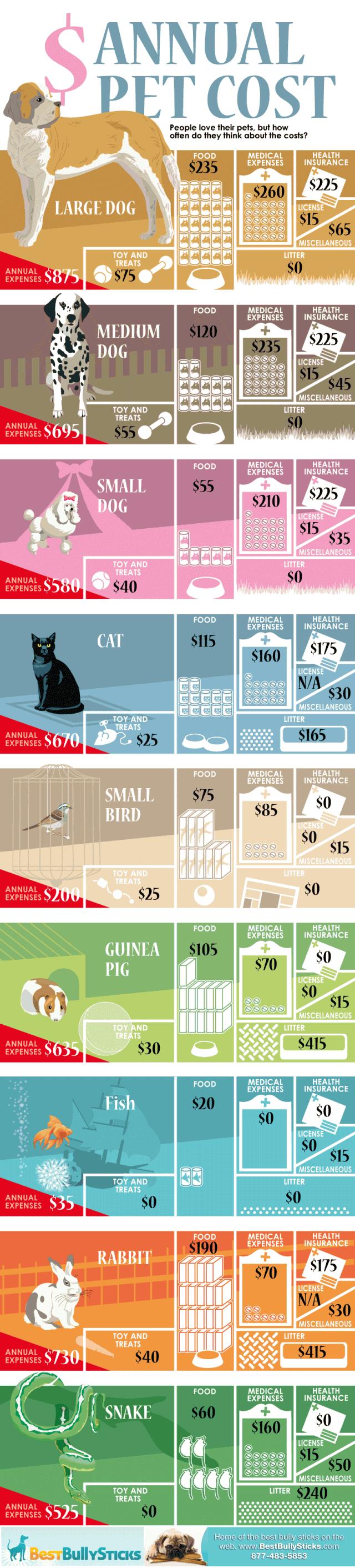 annual-cost-of-pets_51196de71a4a6-640x2823