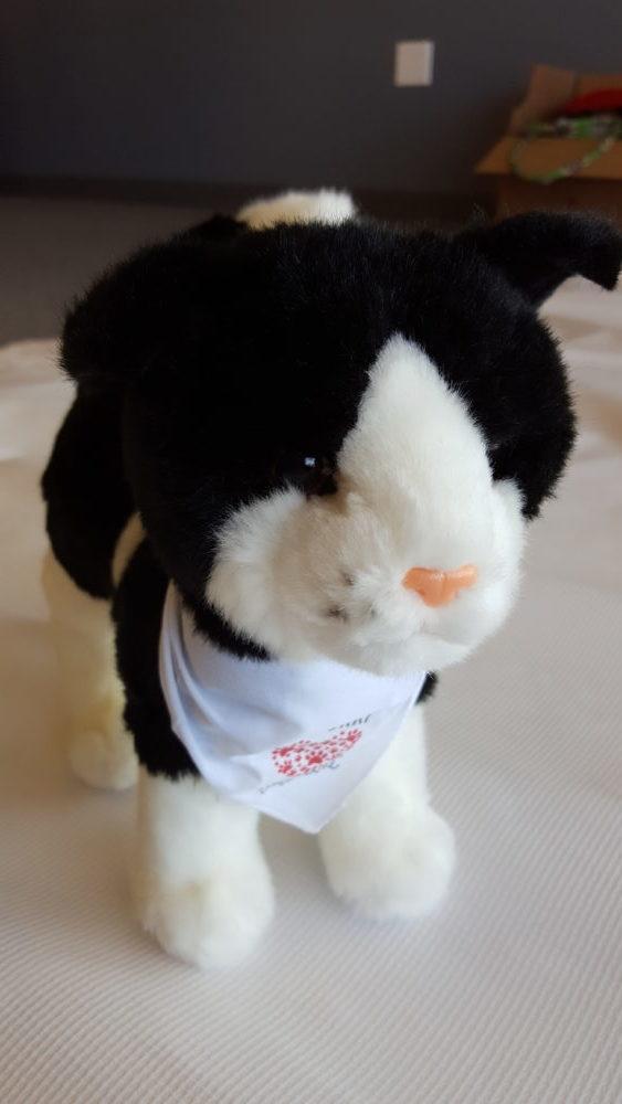 Ptc 200 Black White Cat Stuffed Toy My Furry Valentine